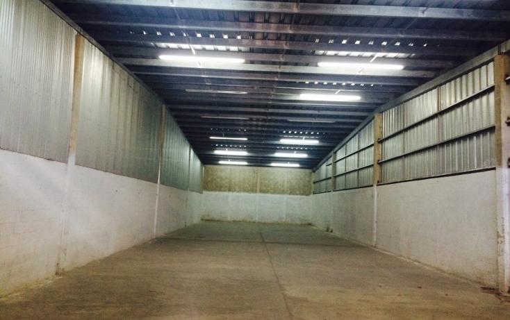 Foto de nave industrial en renta en  , ciudad industrial, umán, yucatán, 1146105 No. 07