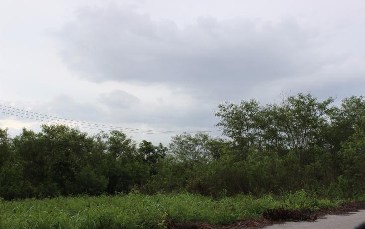 Foto de terreno industrial en venta en  , ciudad industrial, umán, yucatán, 1436457 No. 06