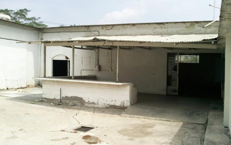 Foto de local en renta en  , ciudad mante centro, el mante, tamaulipas, 2001570 No. 07