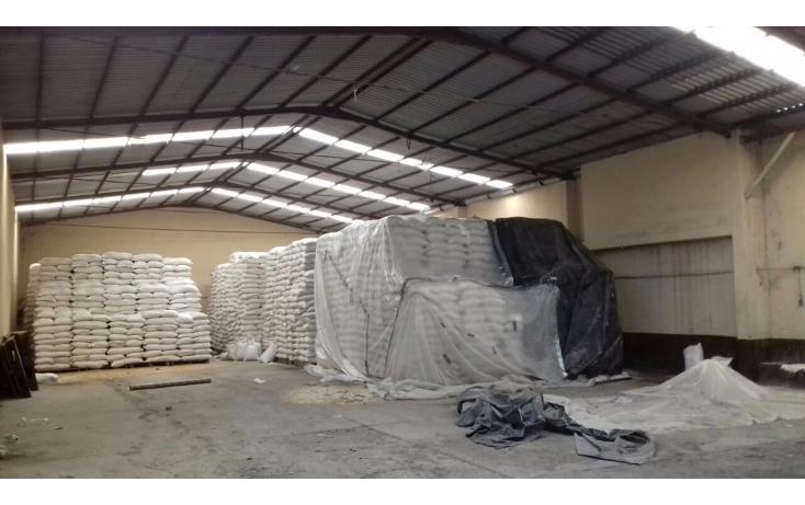 Foto de local en venta en  , ciudad mante centro, el mante, tamaulipas, 2020030 No. 11