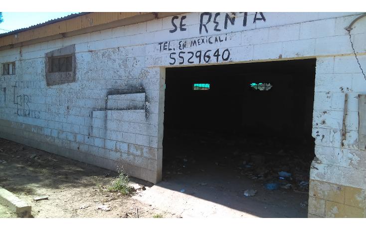 Foto de local en renta en  , ciudad morelos, mexicali, baja california, 1693316 No. 03