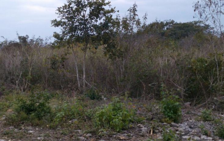 Foto de terreno habitacional en venta en, ciudad primavera, emiliano zapata, veracruz, 1779548 no 03