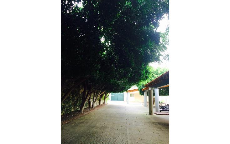 Foto de casa en renta en  , club campestre, león, guanajuato, 1474685 No. 07