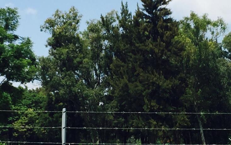 Foto de terreno habitacional en venta en  , club de golf atlas, el salto, jalisco, 1374017 No. 04