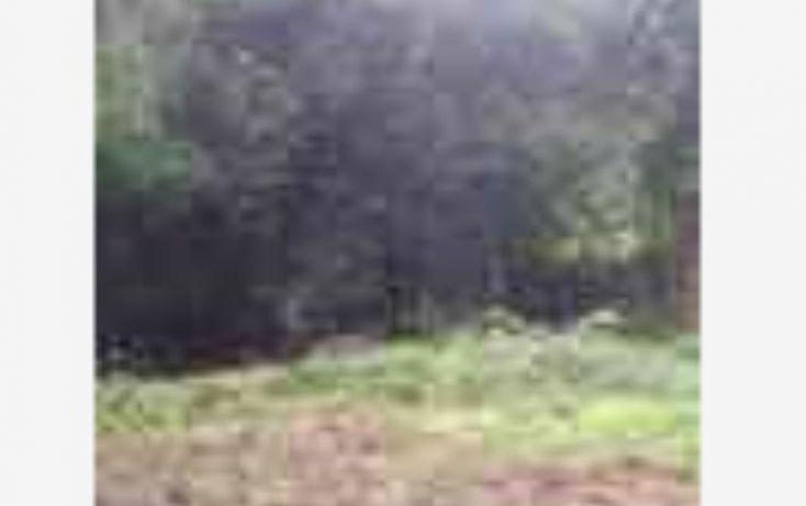 Foto de terreno habitacional en venta en club de golf, avándaro, valle de bravo, estado de méxico, 1231299 no 07