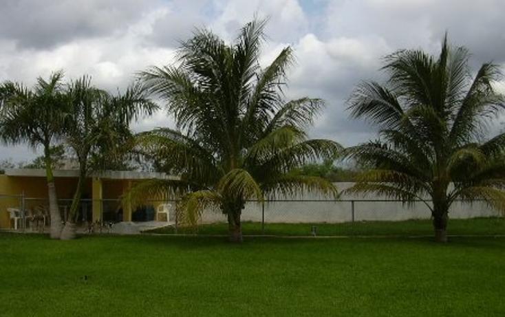 Foto de casa en venta en  , club de golf la ceiba, mérida, yucatán, 1059153 No. 24
