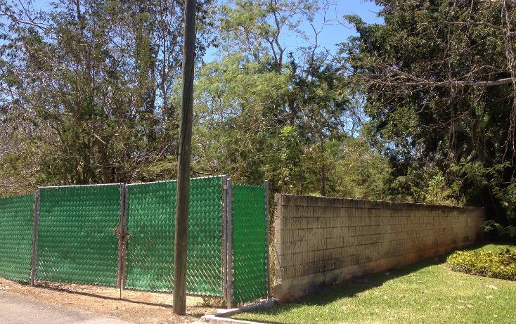 Foto de terreno habitacional en venta en  , club de golf la ceiba, mérida, yucatán, 1079363 No. 01
