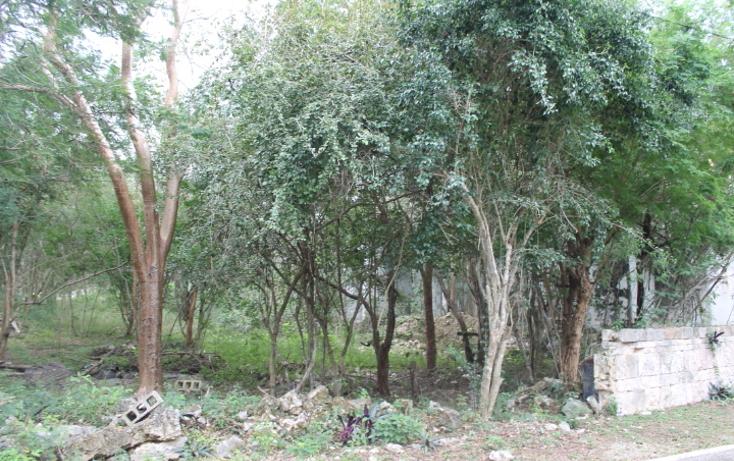 Foto de terreno habitacional en venta en  , club de golf la ceiba, m?rida, yucat?n, 1088207 No. 01