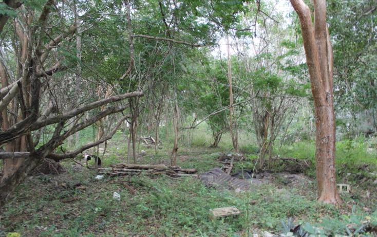 Foto de terreno habitacional en venta en  , club de golf la ceiba, m?rida, yucat?n, 1088207 No. 02