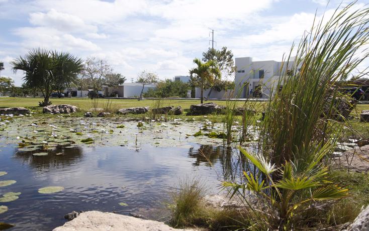 Foto de casa en venta en  , club de golf la ceiba, mérida, yucatán, 1176029 No. 12
