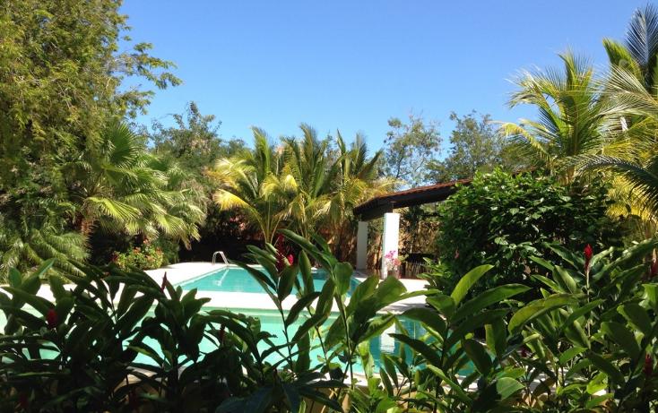 Foto de casa en renta en  , club de golf la ceiba, m?rida, yucat?n, 1176557 No. 17