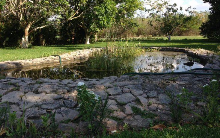 Foto de casa en venta en, club de golf la ceiba, mérida, yucatán, 1286815 no 16