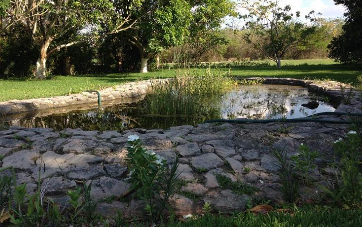 Foto de casa en venta en  , club de golf la ceiba, mérida, yucatán, 1286815 No. 16