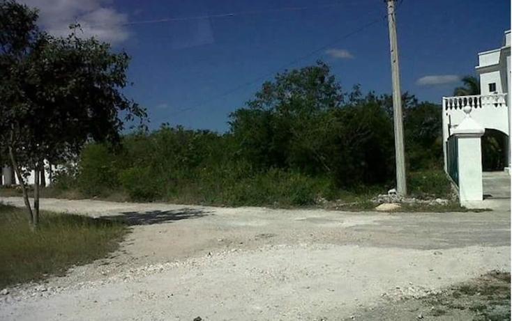 Foto de terreno habitacional en venta en  , club de golf la ceiba, mérida, yucatán, 1438793 No. 01