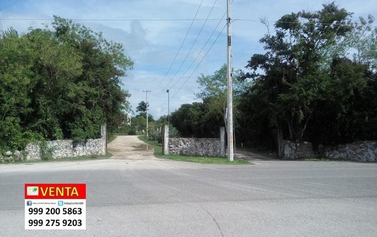 Foto de terreno habitacional en venta en  , club de golf la ceiba, mérida, yucatán, 1438793 No. 03