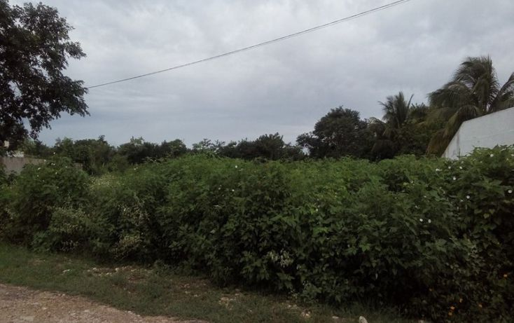 Foto de terreno habitacional en venta en, club de golf la ceiba, mérida, yucatán, 1438793 no 04