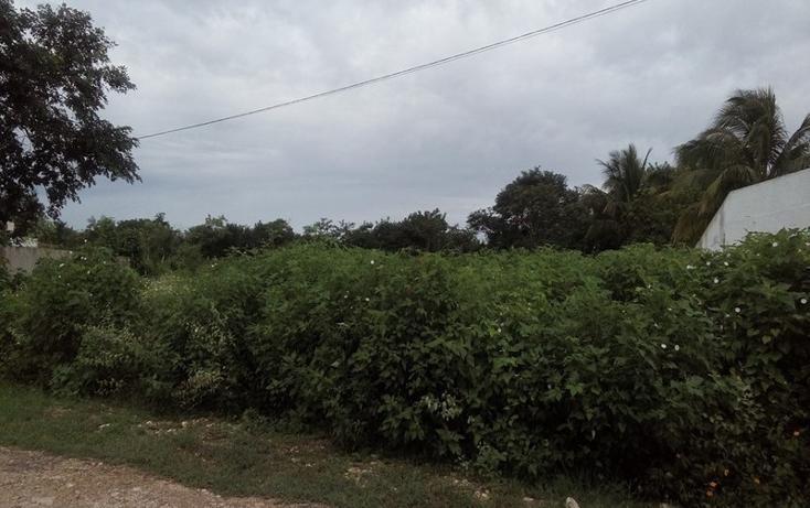 Foto de terreno habitacional en venta en  , club de golf la ceiba, mérida, yucatán, 1438793 No. 04