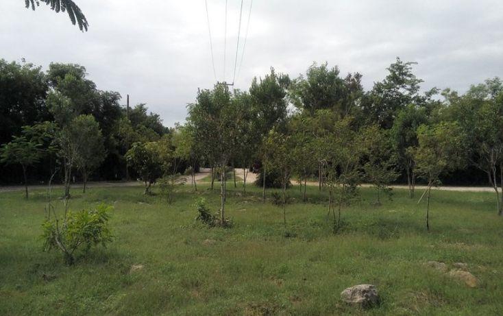 Foto de terreno habitacional en venta en, club de golf la ceiba, mérida, yucatán, 1438793 no 06
