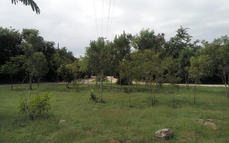 Foto de terreno habitacional en venta en  , club de golf la ceiba, mérida, yucatán, 1438793 No. 06