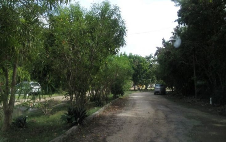 Foto de terreno habitacional en venta en, club de golf la ceiba, mérida, yucatán, 1438793 no 07