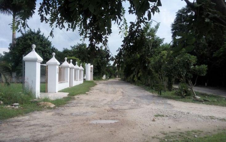 Foto de terreno habitacional en venta en, club de golf la ceiba, mérida, yucatán, 1438793 no 08
