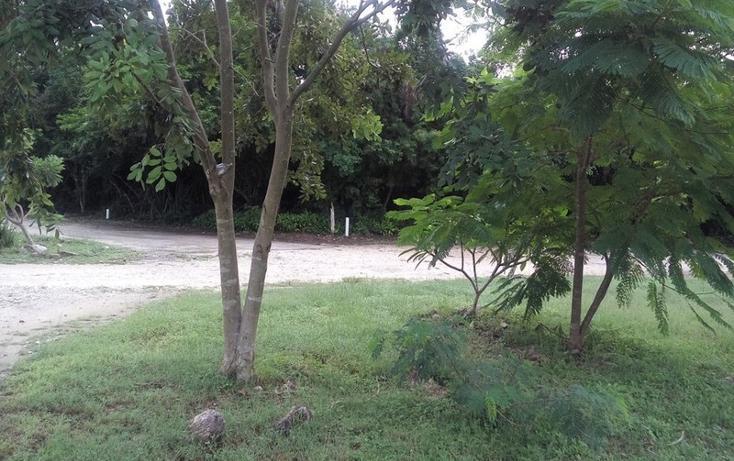 Foto de terreno habitacional en venta en  , club de golf la ceiba, mérida, yucatán, 1438793 No. 09