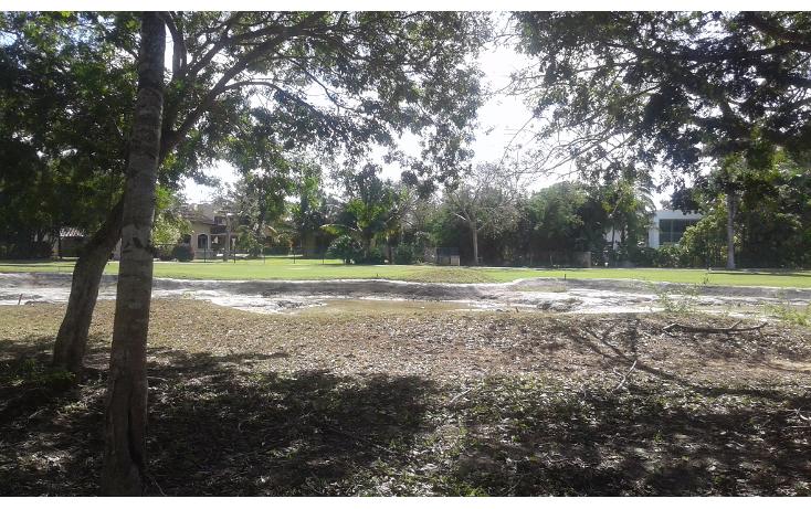 Foto de terreno habitacional en venta en  , club de golf la ceiba, m?rida, yucat?n, 1765308 No. 02