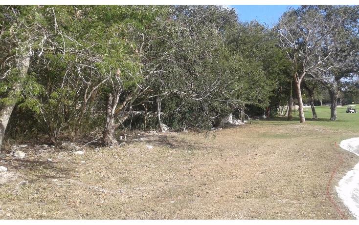 Foto de terreno habitacional en venta en  , club de golf la ceiba, m?rida, yucat?n, 1765308 No. 05