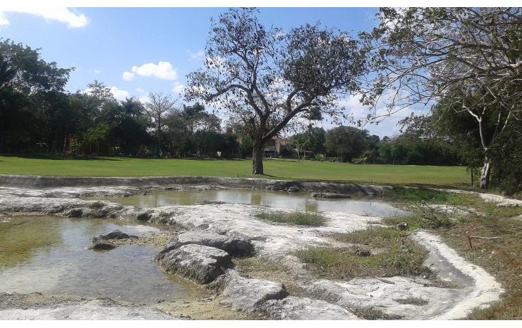 Foto de terreno habitacional en venta en  , club de golf la ceiba, m?rida, yucat?n, 1765308 No. 06