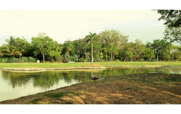 Foto de terreno habitacional en venta en  , club de golf la ceiba, m?rida, yucat?n, 1979678 No. 01