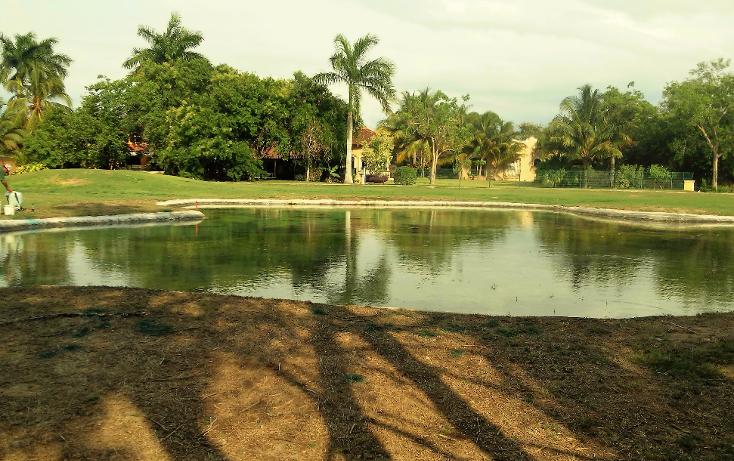 Foto de terreno habitacional en venta en  , club de golf la ceiba, m?rida, yucat?n, 1979678 No. 04