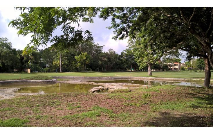 Foto de terreno habitacional en venta en  , club de golf la ceiba, mérida, yucatán, 2039878 No. 02