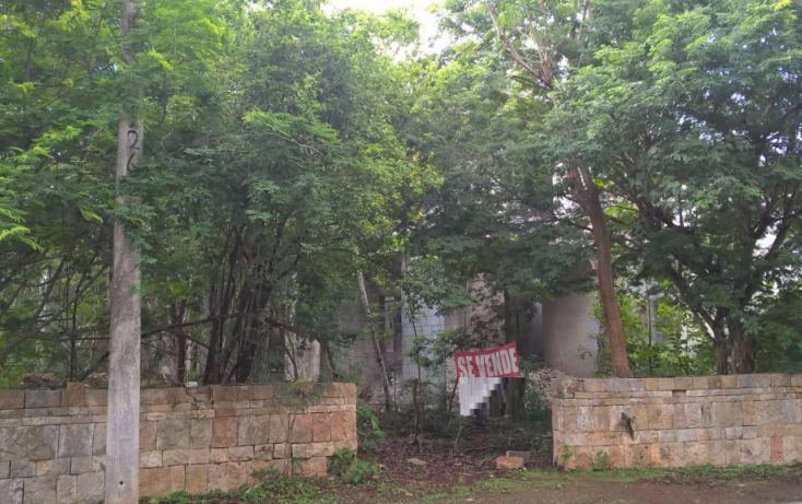 Foto de terreno habitacional en venta en, club de golf la ceiba, mérida, yucatán, 2039878 no 05