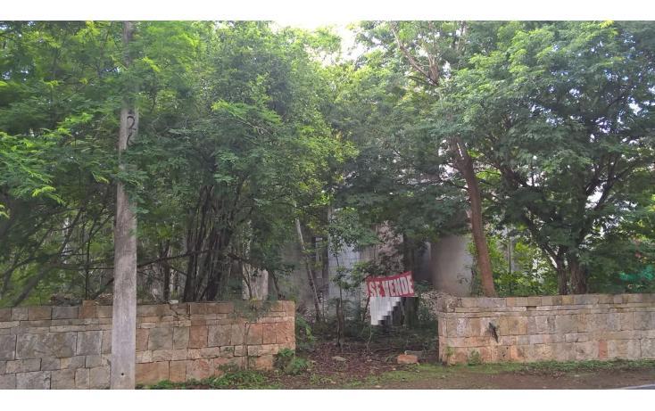 Foto de terreno habitacional en venta en  , club de golf la ceiba, mérida, yucatán, 2039878 No. 05