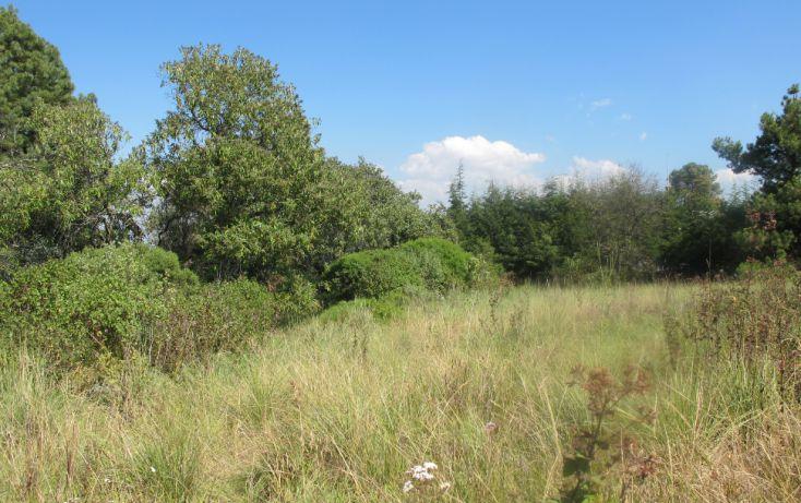 Foto de terreno habitacional en venta en, club de golf los encinos, lerma, estado de méxico, 1489205 no 01