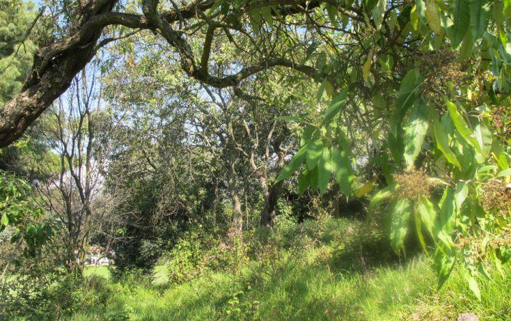Foto de terreno habitacional en venta en, club de golf los encinos, lerma, estado de méxico, 1489205 no 02