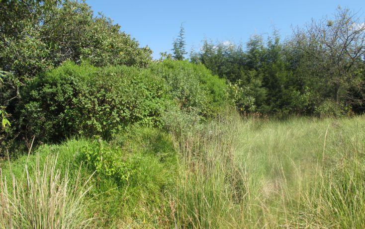Foto de terreno habitacional en venta en, club de golf los encinos, lerma, estado de méxico, 1489205 no 07