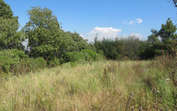 Foto de terreno habitacional en venta en, club de golf los encinos, lerma, estado de méxico, 1489205 no 08