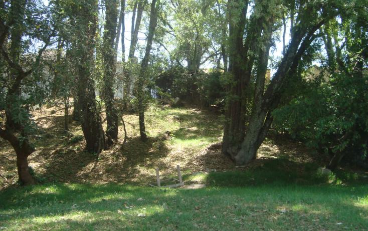 Foto de terreno habitacional en venta en  , club de golf los encinos, lerma, méxico, 1165651 No. 03
