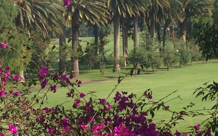 Foto de casa en renta en  , club de golf méxico, tlalpan, distrito federal, 1911936 No. 05
