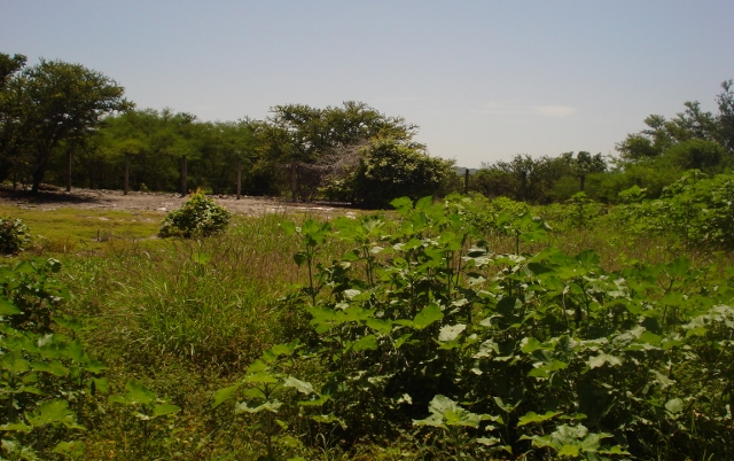 Foto de terreno habitacional en venta en  , club de golf santa fe, xochitepec, morelos, 1135813 No. 03