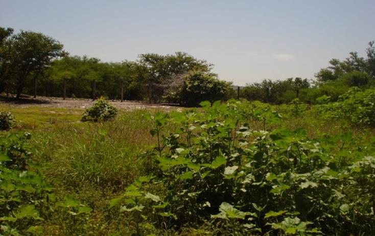 Foto de terreno habitacional en venta en  , club de golf santa fe, xochitepec, morelos, 1135847 No. 02