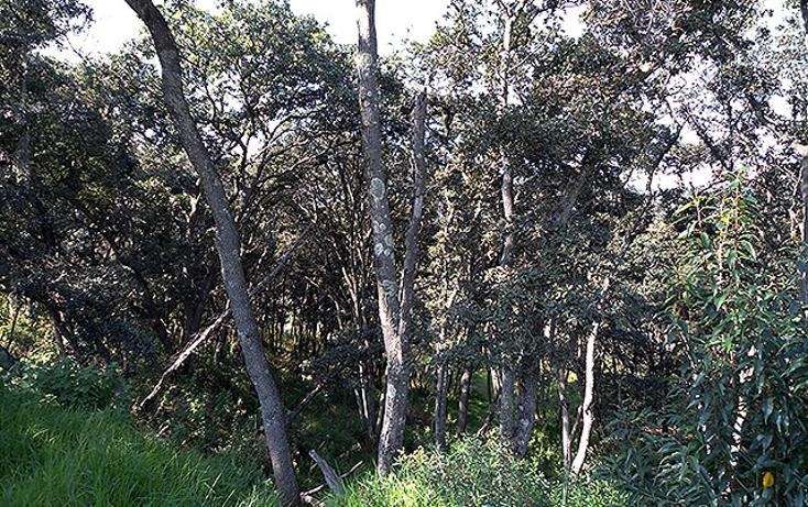 Foto de terreno habitacional en venta en  , club de golf valle escondido, atizapán de zaragoza, méxico, 1256517 No. 02