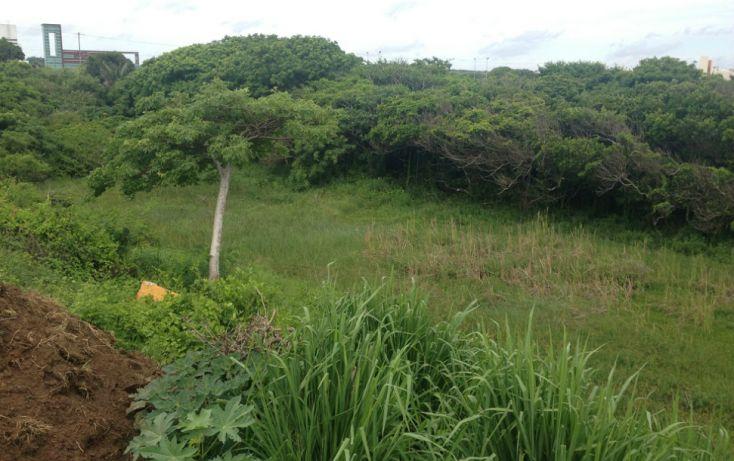 Foto de terreno habitacional en venta en, club de golf villa rica, alvarado, veracruz, 1482433 no 05