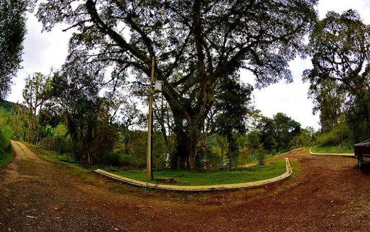 Foto de terreno habitacional en venta en, coatepec centro, coatepec, veracruz, 1363267 no 01