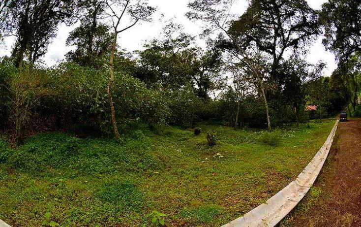 Foto de terreno habitacional en venta en, coatepec centro, coatepec, veracruz, 1363267 no 07