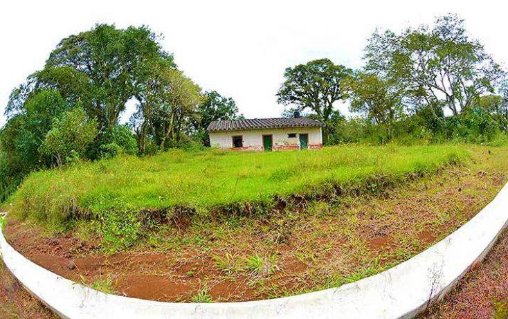 Foto de terreno habitacional en venta en, coatepec centro, coatepec, veracruz, 1363267 no 08