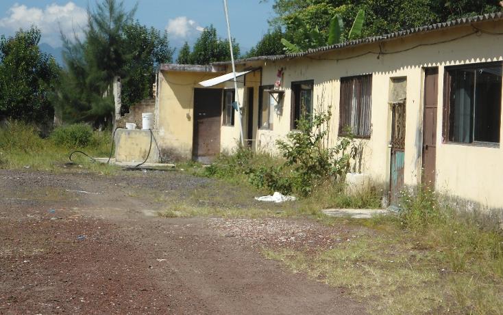 Foto de terreno comercial en venta en  , coatepec centro, coatepec, veracruz de ignacio de la llave, 1069563 No. 05