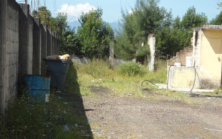 Foto de terreno comercial en venta en  , coatepec centro, coatepec, veracruz de ignacio de la llave, 1069563 No. 06