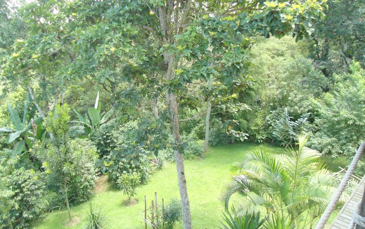 Foto de casa en venta en  , coatepec centro, coatepec, veracruz de ignacio de la llave, 1085819 No. 67